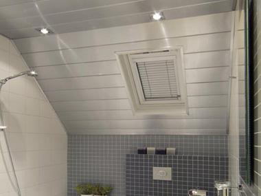 Badkamer Plafond Aluminium : Luxalon aluminium plafonds voor vochtige ruimtes